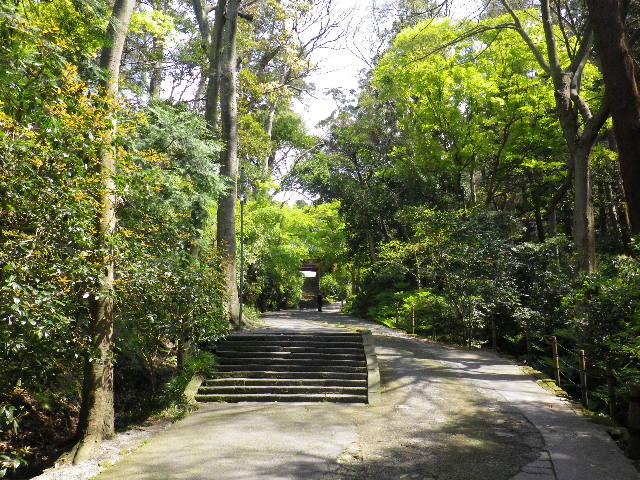 01) 日蓮宗 「 長興山 妙本寺 」 _ 鎌倉市大町