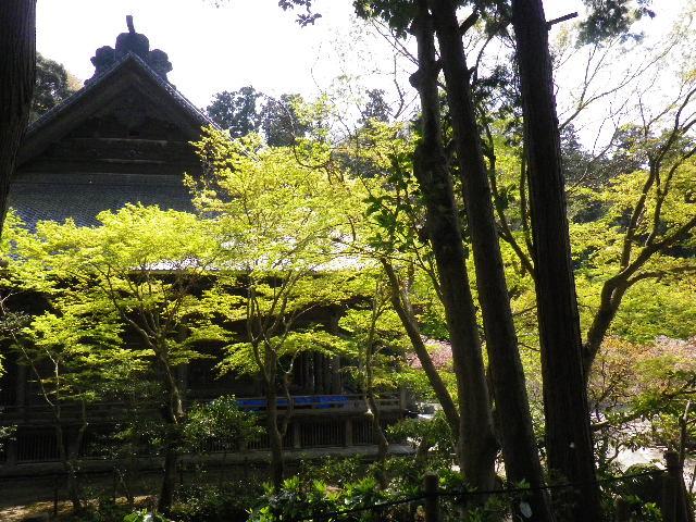 18) ' 祖師堂 ' 左側面方向