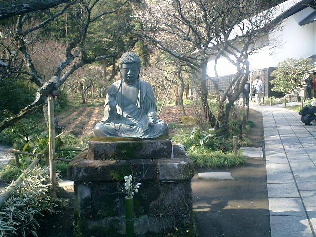 12)東慶寺、金仏