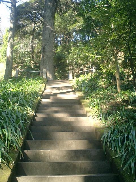 17)用堂尼墓への階段