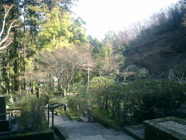 20)東慶寺、墓苑最奥から振り返る