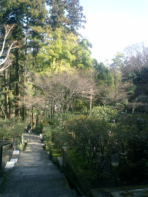 21)東慶寺、墓苑の階段から振り返る