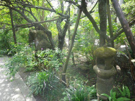 04) 境内参道の右側。 _ 梅の時期になると、一本の木に白と桃色の梅が咲く珍しい光景が見られる。 福寿草も、この辺りに咲く。