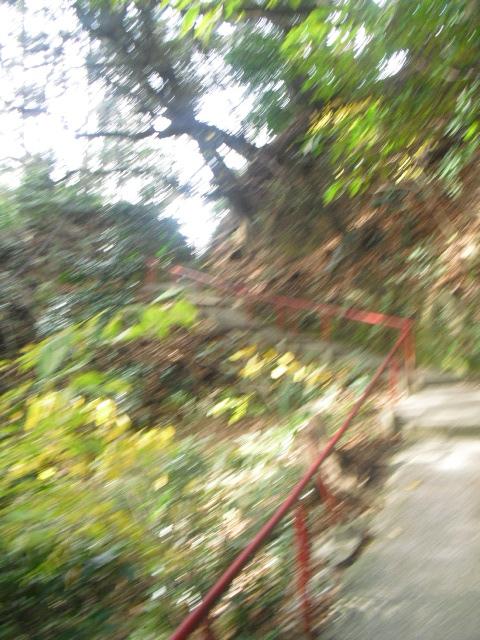 18) ' 観音堂 ' から更に山中への入口 _ 「岩殿寺」 _10:36am