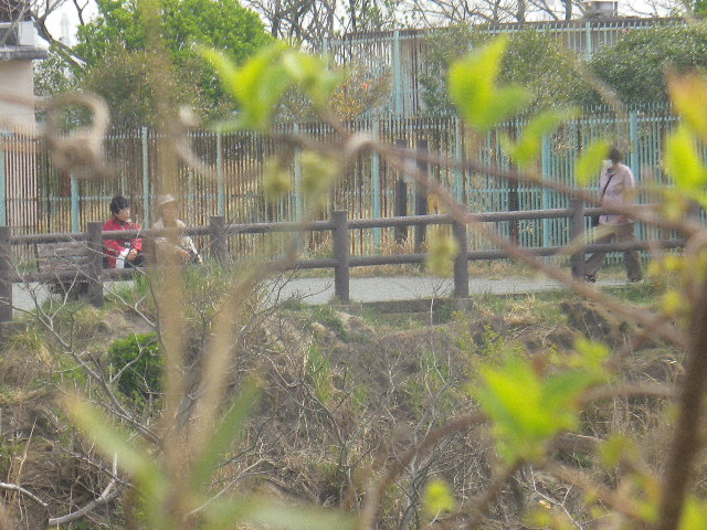 19) 写真18)のズーム。写真05)直近で舗装された他方の分岐坂を登るので、年配者にはココを勧める。絶景も同程度。 _ 10:21am頃~