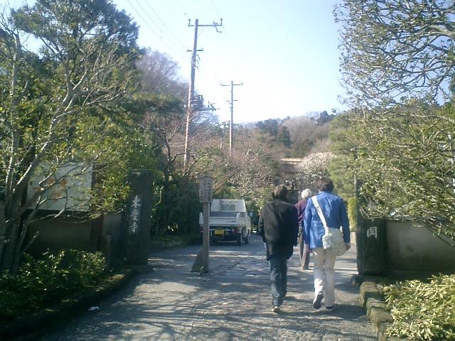 01)06.03.04北鎌倉「東慶寺」梅の季節