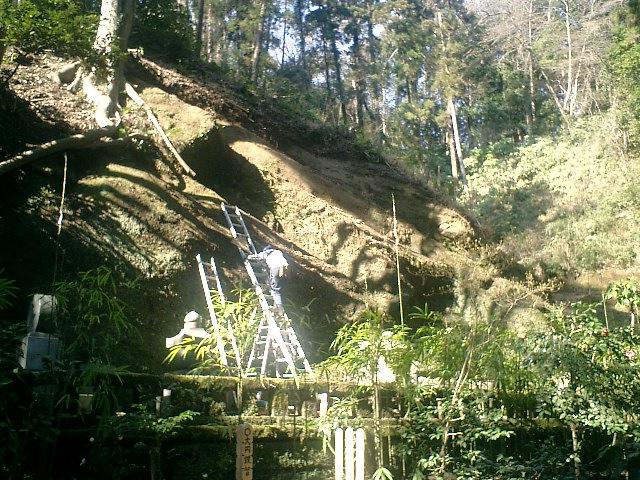18)崖の棚に積もった落葉を除去して景観を維持