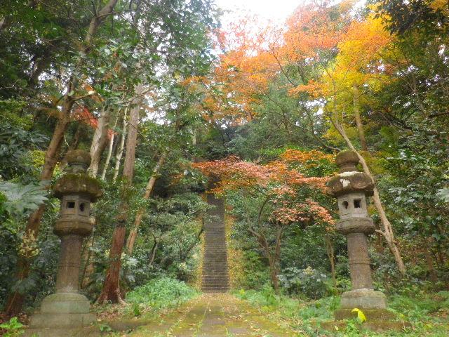 03-6) 「護良親王墓」、ニつ目の階段手前。