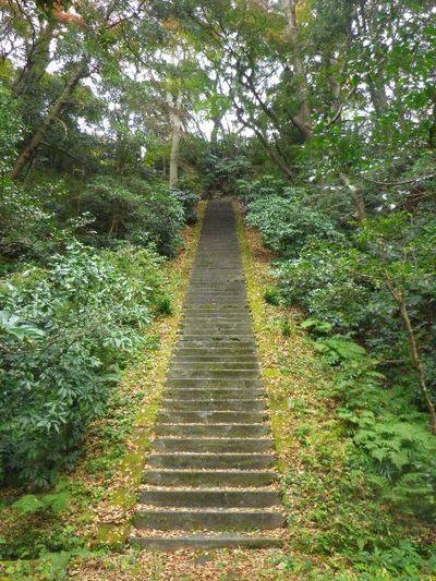 03-9) 一つ目の倍ほどの長さ、「護良親王墓」、ニつ目の階段。