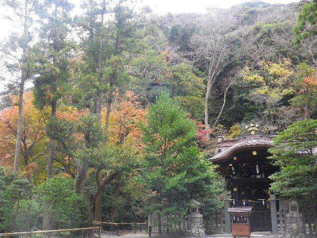 2-01) 「白旗神社」 周辺
