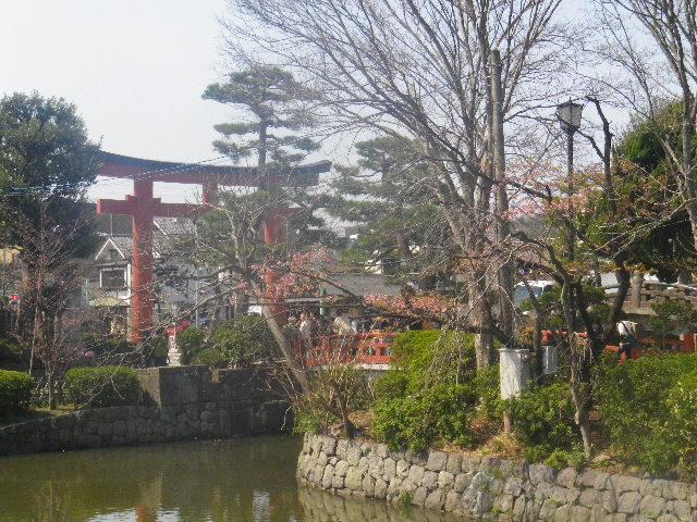 12-1) 以下は、 源氏池 ' の ' 旗上弁財天社 ' から見える範囲での境内。