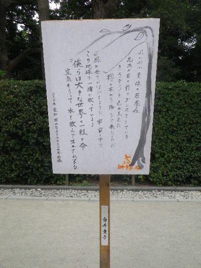 07-1) 白井貴子
