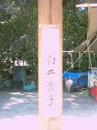 11)白井貴子(2)