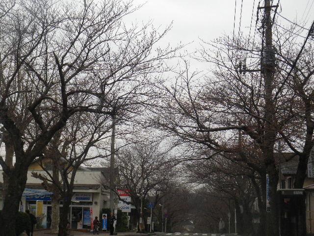 01) ' 鎌倉逗子ハイランド ' の、西友ストアー周辺。 _ 逗子市久木区域