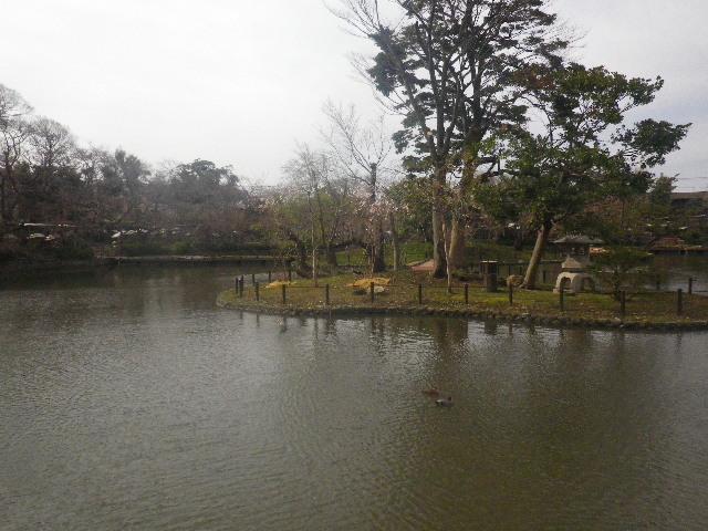 04-1) 源平池の源氏池側休憩所から