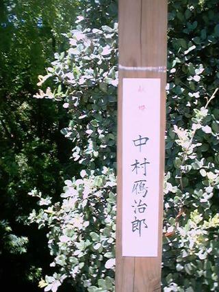 30)中村雁治郎(2)