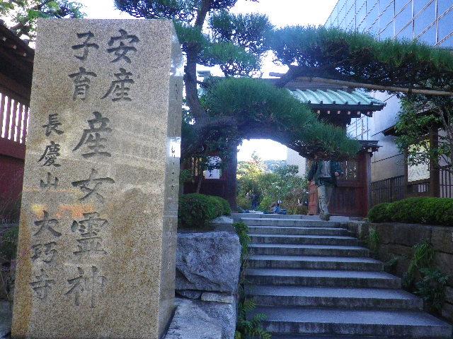01) 14.11.14鎌倉「大巧寺」初冬の庭
