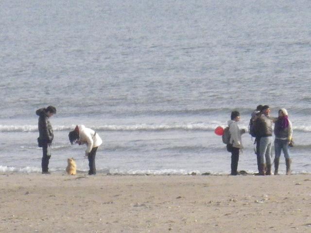 05) 鎌倉 由比ガ浜海岸/材木座海岸