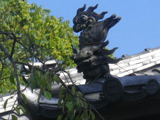 36-2)  15.09.19 鎌倉「宝戒寺」萩をかき分けて境内を歩く季節