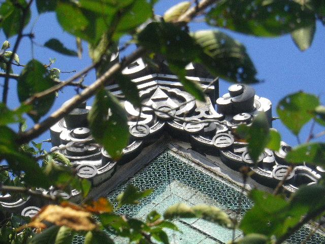 37-1)  15.09.19 鎌倉「宝戒寺」萩をかき分けて境内を歩く季節