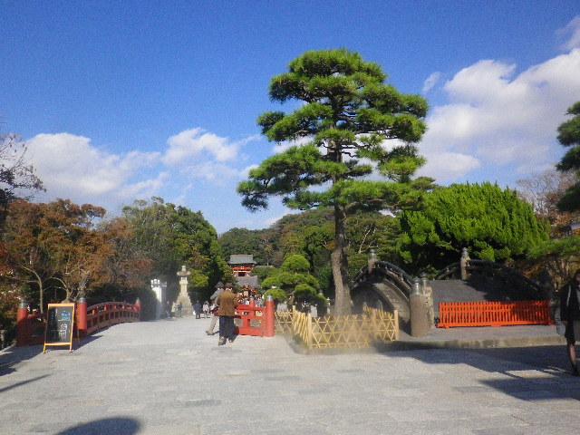 09) ' 三の鳥居 ' 周辺から _ 15.11.30 鎌倉「鶴岡八幡宮」葉が色づき始める頃