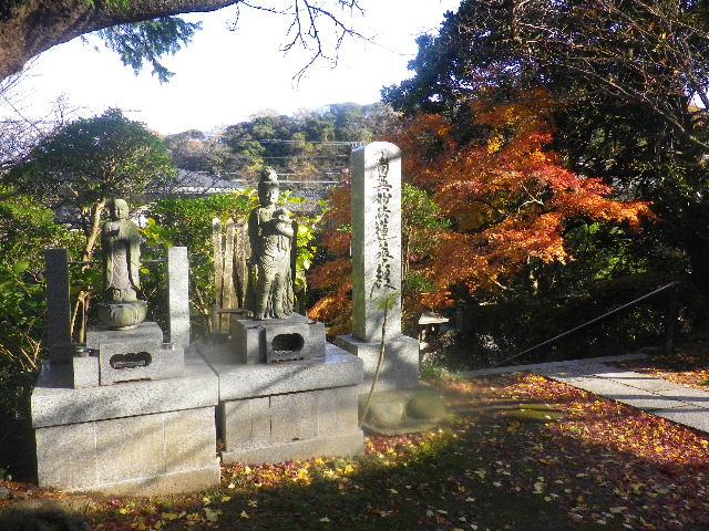 03-3)   15.12.12 鎌倉「長勝寺」枯木は紅葉の終焉を迎え、若木は未だ楽しめる。