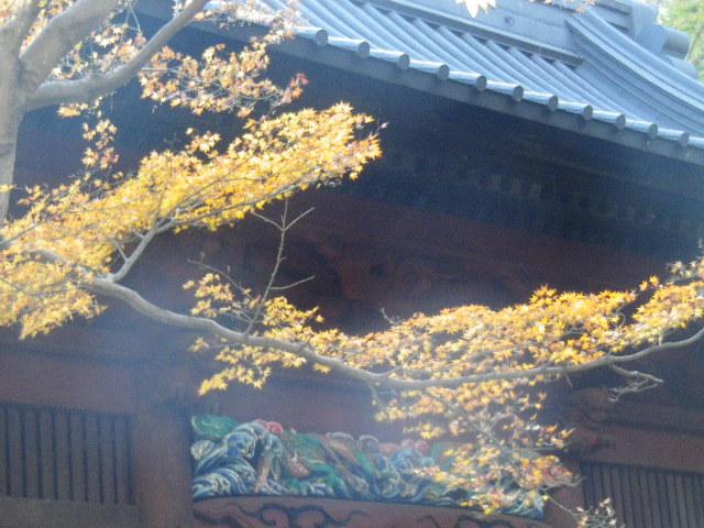 04-2)  15.12.12 鎌倉「妙本寺」紅葉の最盛期