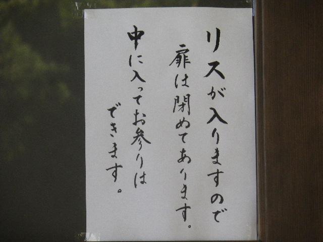 05-2) リスのことよりも、「えっ  本堂の中へ入ることができるのかぁ~」っと知ったので撮った。