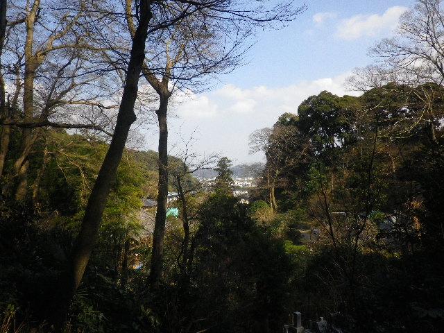 14-2) 16.03.04 鎌倉「光則寺」梅が咲く頃