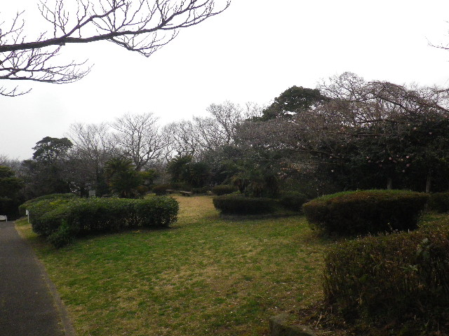 05)  _ 16.03.06 曇りのち雨の逗子「大崎公園」