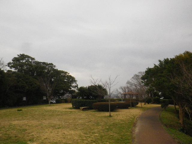 06)  _ 16.03.06 曇りのち雨の逗子「大崎公園」