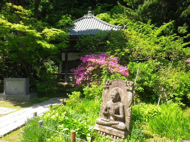 06-1)  _ 16.04.30 晩春の・・・というよりも、立夏直前というべき緑が濃い  鎌倉「安国論寺」。