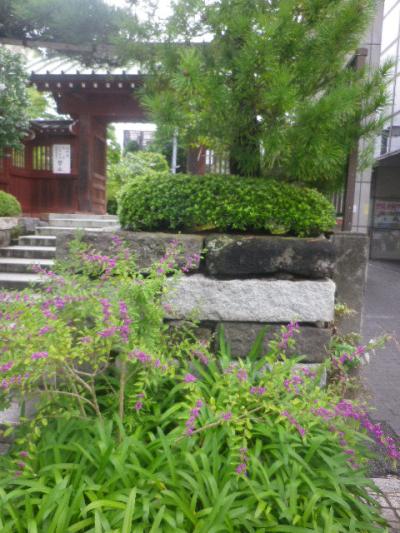 01) _ 16.09.21 鎌倉「大巧寺」 秋彼岸