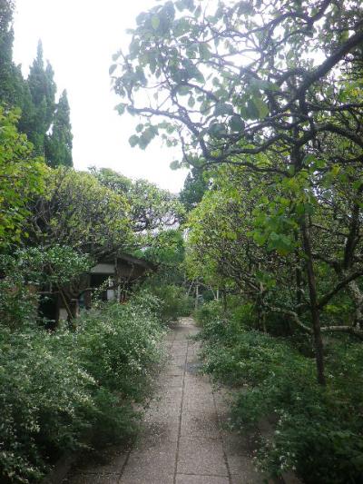 00-2) _ 16.09.29 鎌倉「宝戒寺」 ' 萩の寺 ' とも呼ばれるが、今年の花は台風に甚振られた。