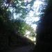 IMGP0003 _ 16.11.26 鎌倉山「扇湖山荘」公開を観覧した