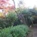 IMGP0015 _ 16.11.26 鎌倉山「扇湖山荘」公開を観覧した