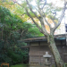 IMGP0021 _ 16.11.26 鎌倉山「扇湖山荘」公開を観覧した