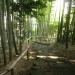 IMGP0017 _ 16.11.26 鎌倉山「扇湖山荘」公開を観覧した
