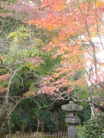 2-03)  16.11.30 初冬の 鎌倉「安国論寺」