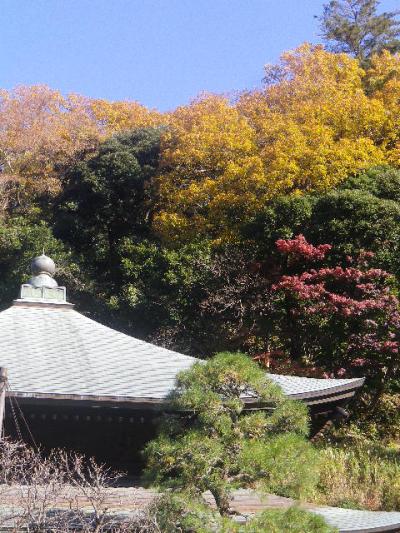 04-5)   16.12.02 初冬の 鎌倉「瑞泉寺」