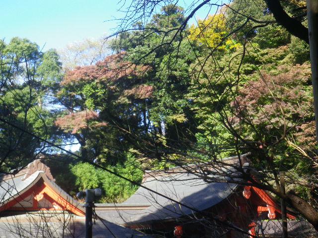 06) 16.12.02 初冬の 鎌倉「荏柄天神社」