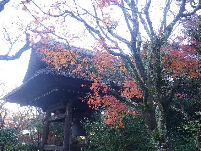 02-2)   16.12.05 初冬の 鎌倉「東慶寺」