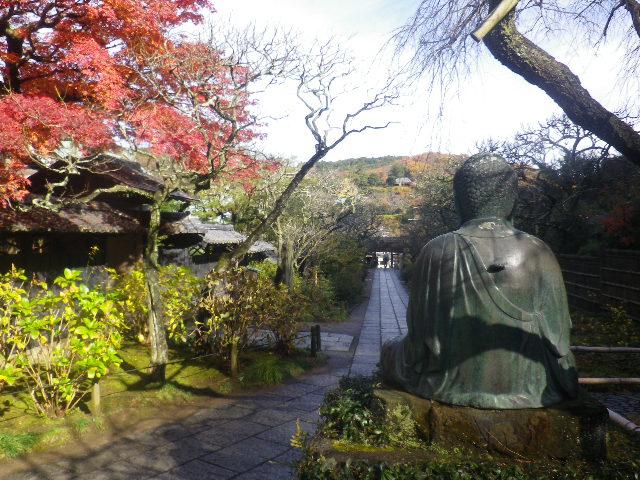 06-2)   16.12.05 初冬の 鎌倉「東慶寺」