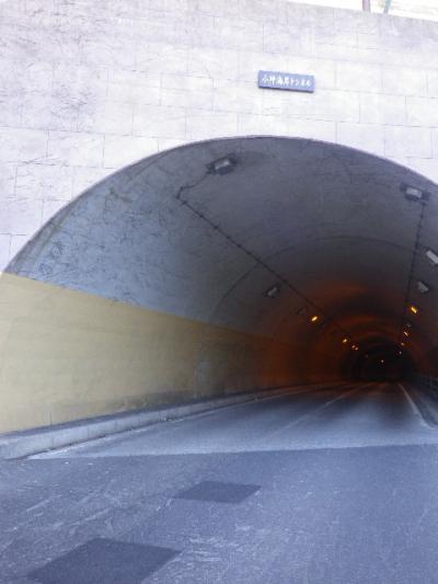 02-1) 今夏は土砂崩れでタイヘンだった ' 小坪海岸トンネル ' で、撮影立ち位置もトンネル全部も逗子市。 17.01.01 平成二十九年 元旦 「史跡  和賀江島」周辺 _ 鎌倉市/逗子市
