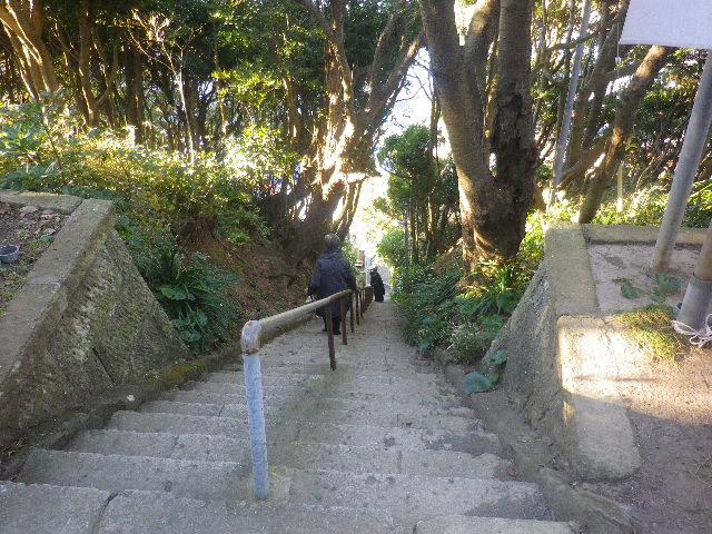 03-5)    表参道の急階段。帰りは ココを通らずに、大崎公園~披露山公園~引き返して、他の古道~階段下~小坪漁港~逗子マリーナ~'  小坪海岸トンネル ' を通らずに、寸断された岬先