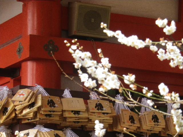 06-2)    17.0218  のどが渇いたから焼鳥くった _ 鎌倉「焼とり 秀吉」