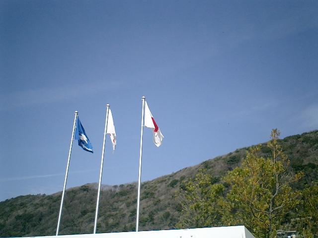 04) 神奈川県立近代美術館_葉山。入口の旗と山を見上げた。