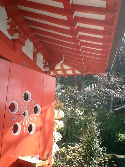 03_07.02.21 鎌倉「荏柄天神社」梅の季節
