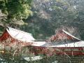 01_07.02.21 鎌倉「荏柄天神社」梅の季節