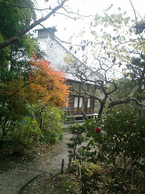 03_06.12.17鎌倉市長谷「光則寺」紅葉の季節
